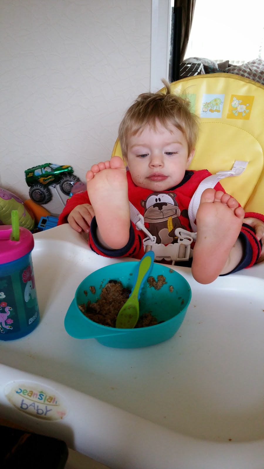 Why won't my toddler eat? – living with a fussy eater