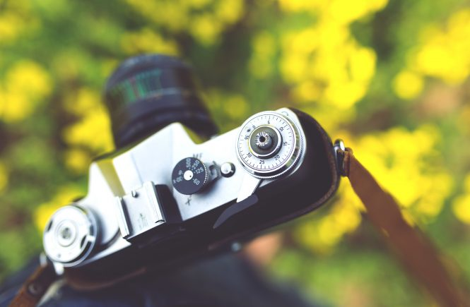 Camera - Naptime Natter