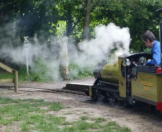 Steam engine Naptime Natter