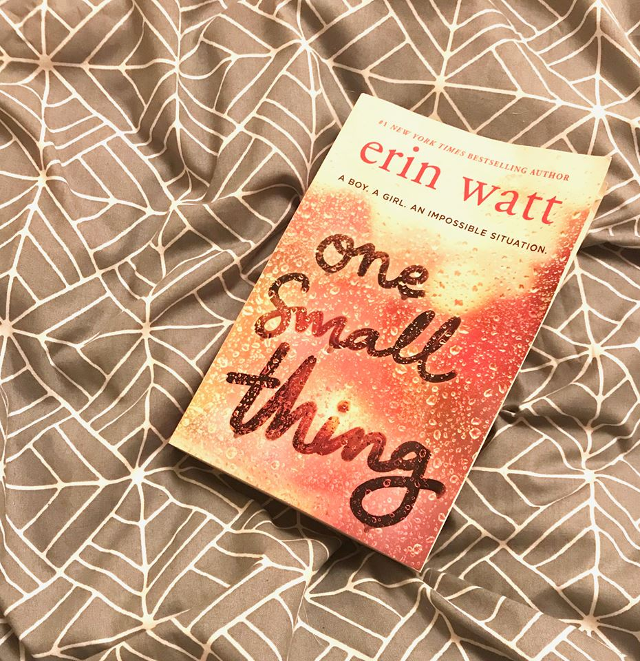 Book club – One Small Thing review