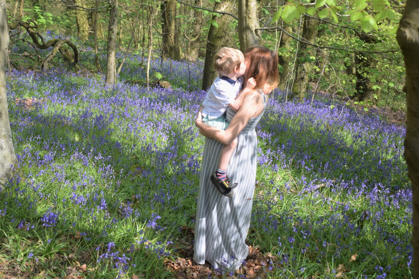 pregnancy mum and son in bluebells